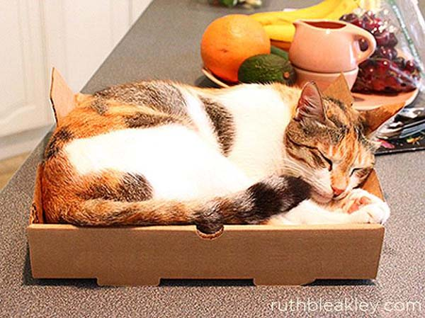 4.) The perfect (simple) cat bed.